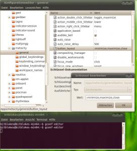 Ubuntu 10.04 Fenster-Knöpfe auf die rechte Seite