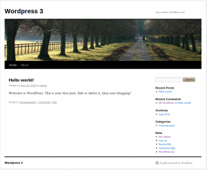 Wordpress Theme TwentyTen