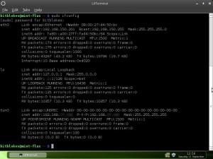 Linux Mint 9 Fluxbox Network-Manager OpenVPN eingewählt
