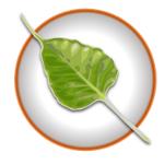 Bodhi Linux Logo 150x150