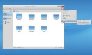 Mandriva Desktop 2011 Dolphin