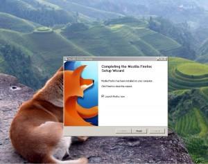 Der echte Firefox!