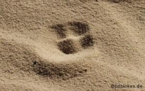 Spur im Sand Teaser