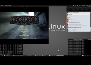 Bioshock Play on Linux