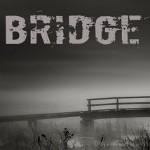 Bridge Linux Logo 150x150