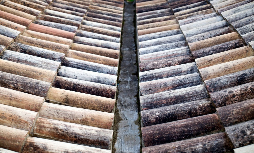 Roof Tiles (Finn Sturdy)