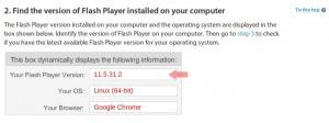 Adobe Flash 11.5.31.2