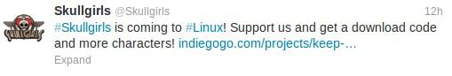 Skullgirls für Linux