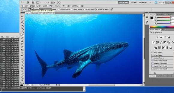 Adobe Photoshop unter Linux
