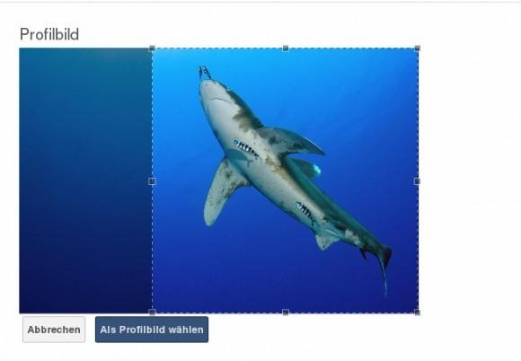ownCloud 6: Profilbild zuschneiden