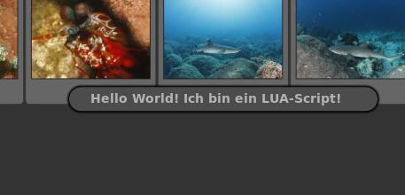 Darktable 1.4 mit LUA-Unterstützung