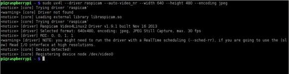 V4L-Treiber für Kamera-Modul des Raspberry Pi geladen