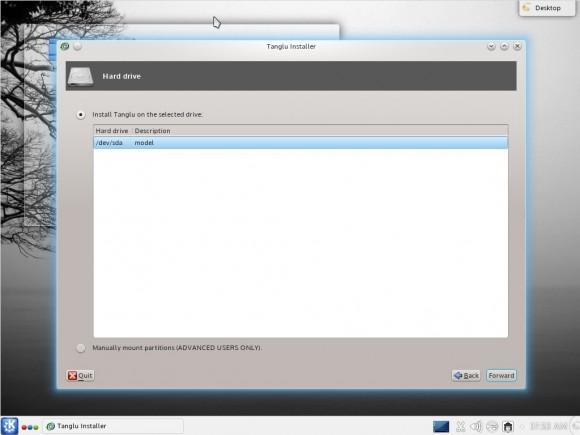 Tanglu 1.0 KDE: Installer - Festplatte