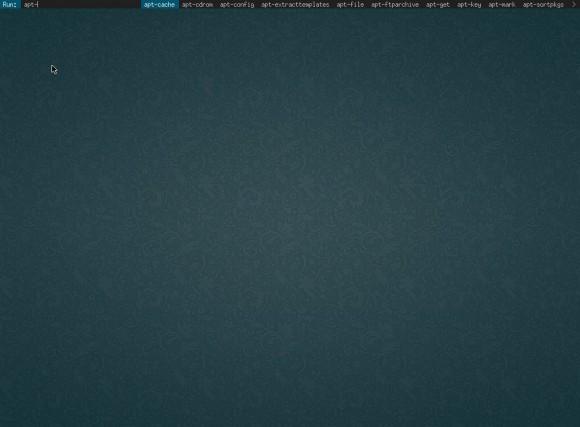 LinuxBBQ: DragonflyWM