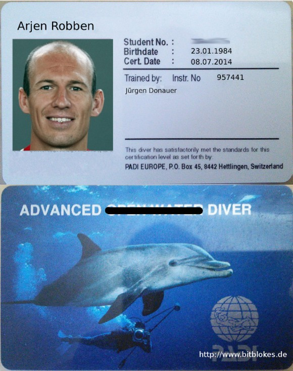 Robben: Advanced Diver