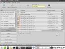 Bodhi Linux 1.3.0 Synaptic