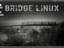 Bridge Linux 2012.5 Desktop