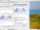 Debian GNU/Linux 6 Squeeze Iceweasel