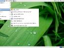 Debian GNU/Linux 6 Squeeze Internet