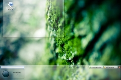 Linux Mint 14 KDE