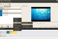 OpenShot 1.3