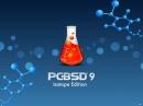 PC-BSD 9.1