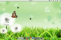 Pear Linux 5