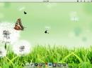 Pear Linux 5 Desktop