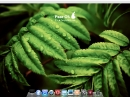 Pear OS 3.0 Panther Finder
