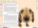 Puppy Linux 5.4 Precise Installieren