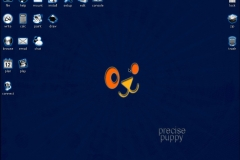 Puppy Linux 5.5 \