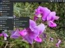 SalineOS 1.6 Multimedia