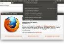 Ubuntu 11.04 Firefox 4