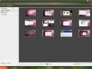 Ubuntu 12.04 LTS Precise Pangolin Shotwell