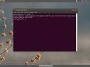 Ubuntu Cinnamon Remix Precise Pangolin Kernel