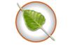 Bodhi Linux 6.0 basiert auf Ubuntu 20.04 Focal Fossa – kurz angesehen