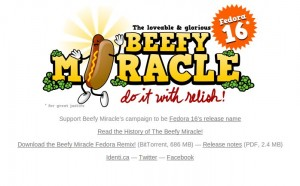 Beefy Miracle Webseite