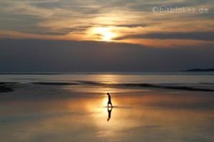 Sonnenuntergang und Fischer