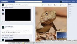 Facebook Timeline ich