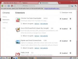 Absolute Linux 14: Chrome-Erweiterungen