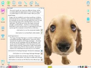 Puppy Linux 5.4 Precise: Installieren