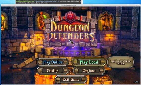 Dungeon Defenders: Läuft unter Linux, braucht bei mir optirun