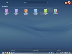ROSA 2012 Desktop: Suche