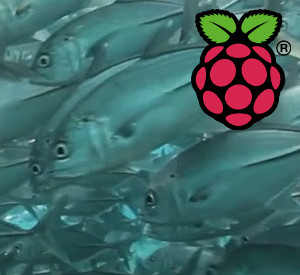 Raspberry Pi video Teaser 300x275