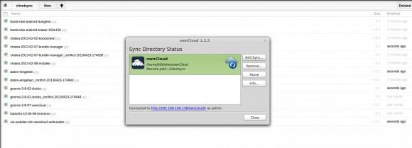 ownCloud 5.0.5 und Sync Client 1.2.5: Wieder _conflict-Dateien