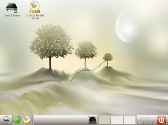 Bodhi Linux 2.3.0: Theme - Vision