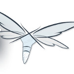 JBoss AS heißt nun WildFly!