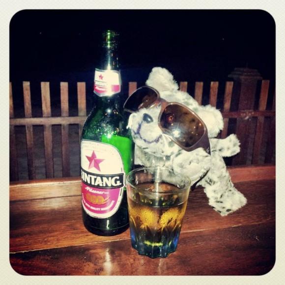 Delbar macht ein bisschen Urlaub in Bira