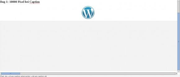 Wordpress-Bug: 10.000 Pixel Extra