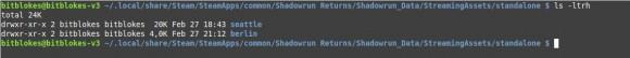 Shadowrun Returns: Dragonfall - Alles in KLeinbuchstaben bitte ...